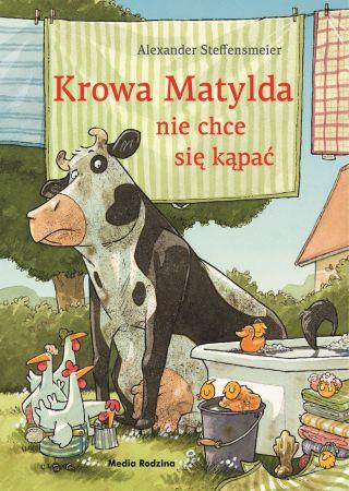 Krowa Matylda nie chce się kąpać. Alexander Steffensmeier